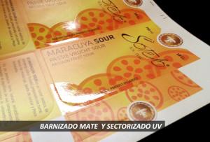 BARNIZADO-UV-ELIKA-GRAPH-01